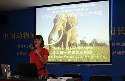 Joyce Poole: The Ivory Trade - China's Elephant in the Room