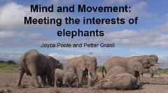 ElephantVoices Publications