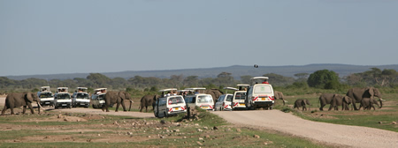 Tourists  and elephants in Amboseli