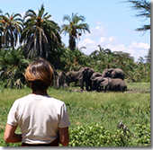 Joyce watching elephants outside our new tent in  Amboseli. (©ElephantVoices)