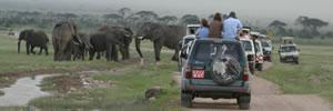 Amboseli tourists (©ElephantVoices)
