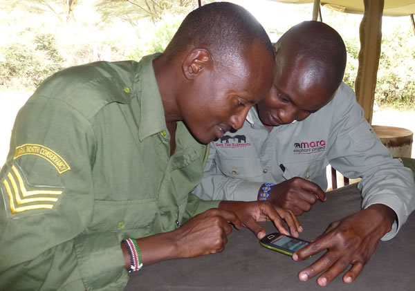 Working with the Mara EleApp together with eager scouts in the Mara Elephant Project. (©ElephantVoices)