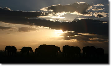 Clouds over  Amboseli