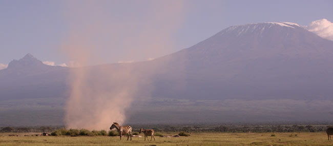 Dusty Amboseli National Park. (©ElephantVoices)